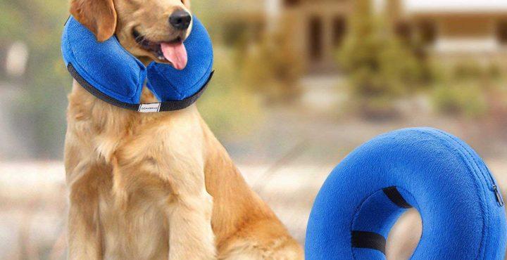 Bencmate-Protective-Inflatable-Dog-Collar-Reviews