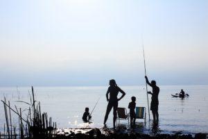 sun dolpjin fishing kayak review