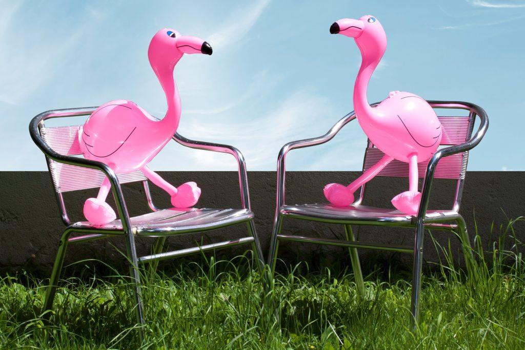 Best Inflatable garden Equipment