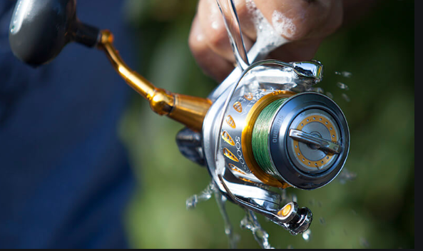 How to Clean Fishing Reels – Step By Step Guide From A Fishing Expert
