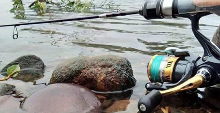 how to rig a fishing pole for trout